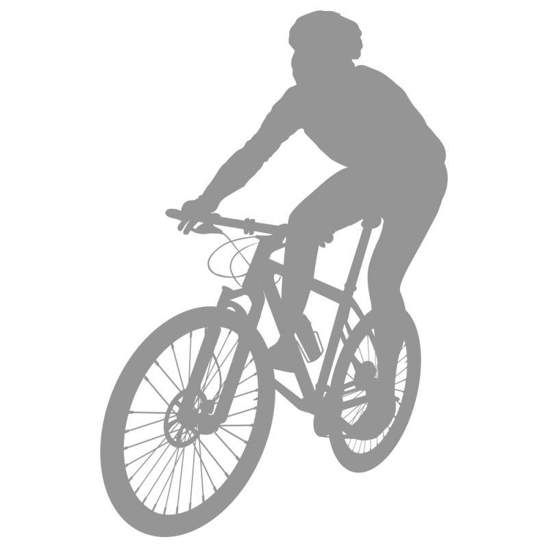 mountain biking nc triangle